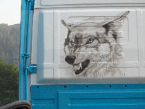 A threatening head of wolf belonged to this tuning truck.